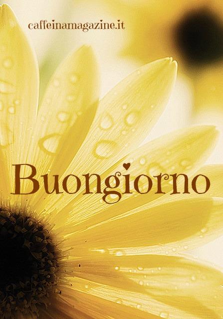 Dai un dolce buongiorno su whatsapp tantissime frasi for Foto per il buongiorno
