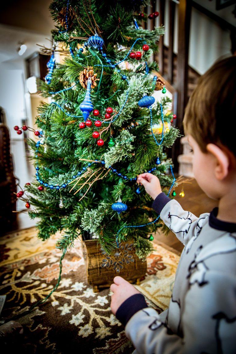 """""""L'albero di Natale non si fa così""""  Dopo tanti anni di dubbi amletici e discussioni"""