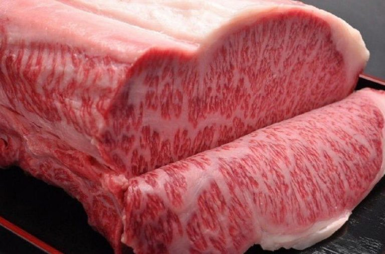 Arriva in Italia la carne più costosa del mondo: costa 1.000