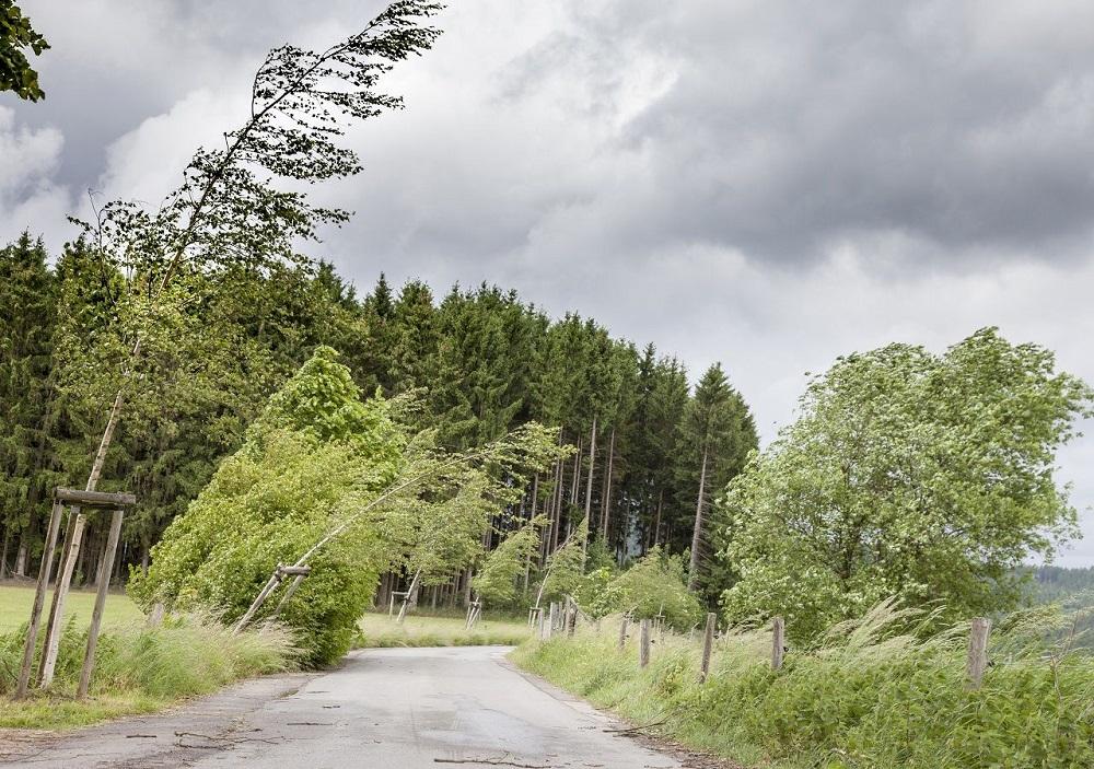 Meteo Italia, ancora piogge e vento. E scatta l'allerta in diverse regioni: le previsioni