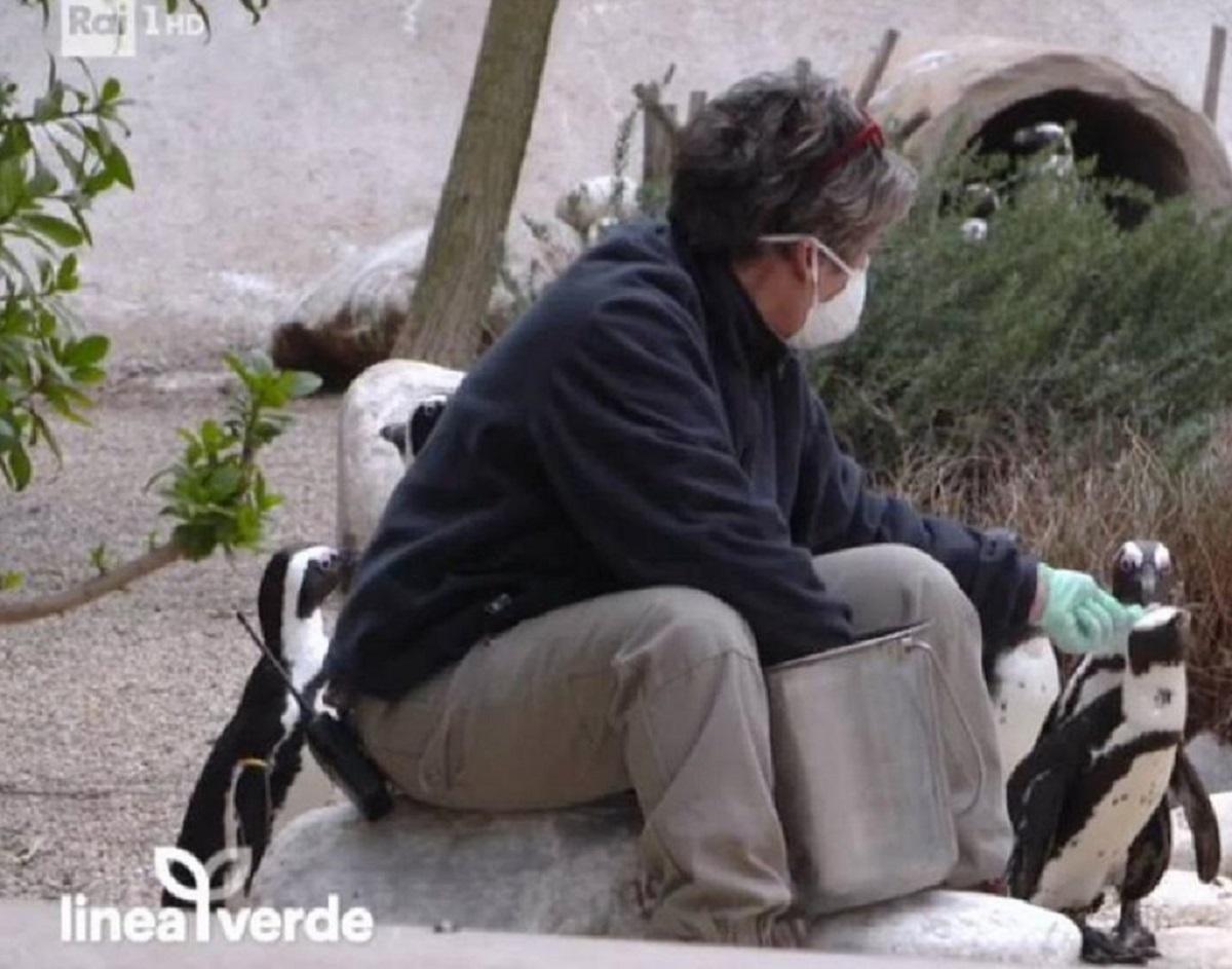 Beppe Convertini confessione futuro televisione