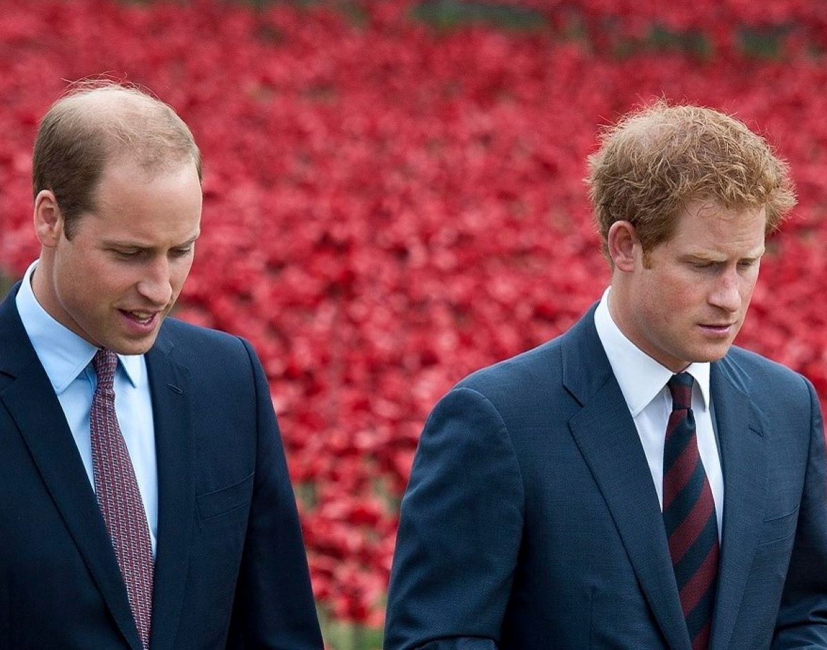 Harry Principe William Statua Lady Diana Prove Pace