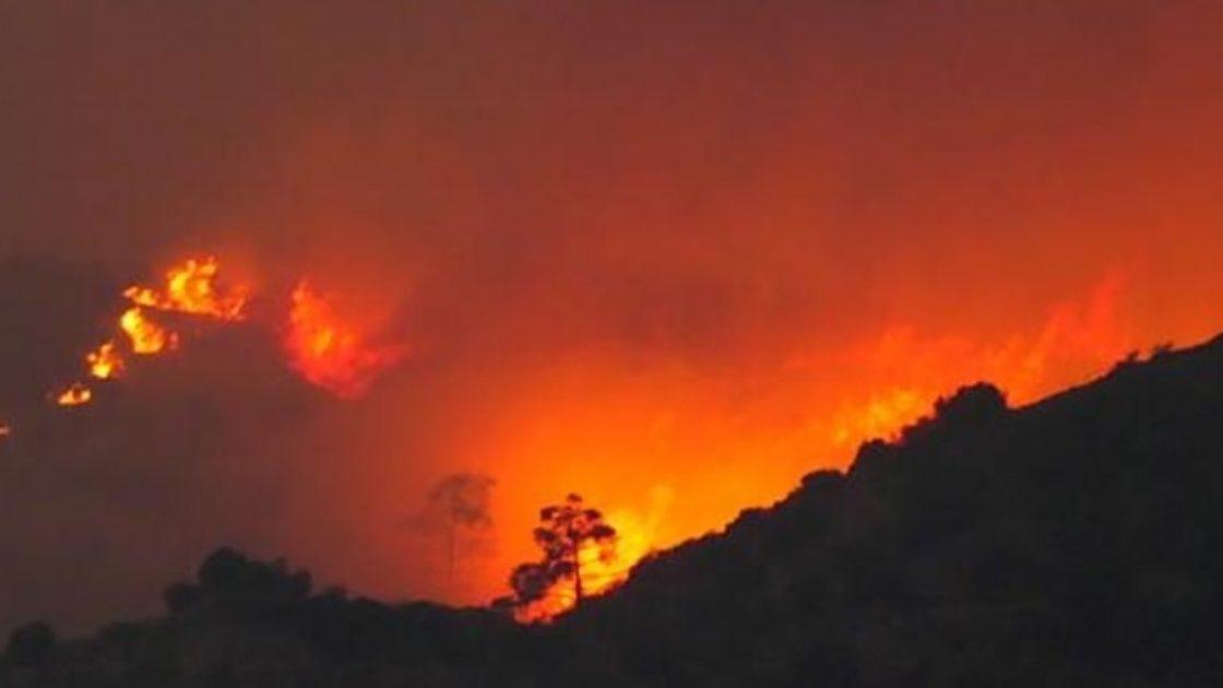 incendio cipro 4 morti