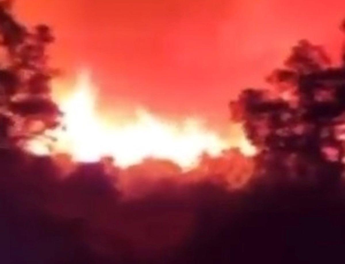 Incendio Saint-Tropez Francia Migliaia Evacuati Migliaia Ettari Foresta Distrutti
