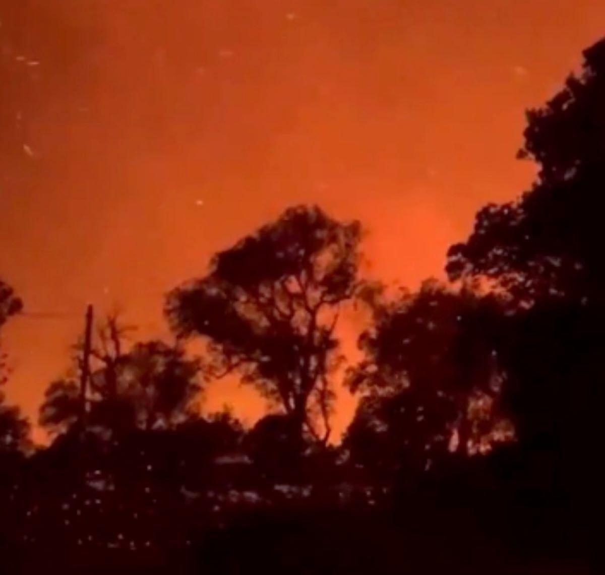 Incendio Saint-Tropez Migliaia Evacuati Migliaia Ettari Fumo