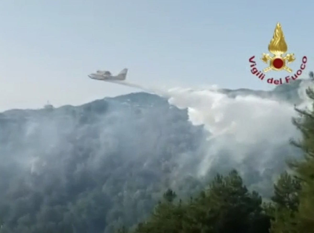 Calabria santuario Madonna di Polsi incendio pellegrini fuga