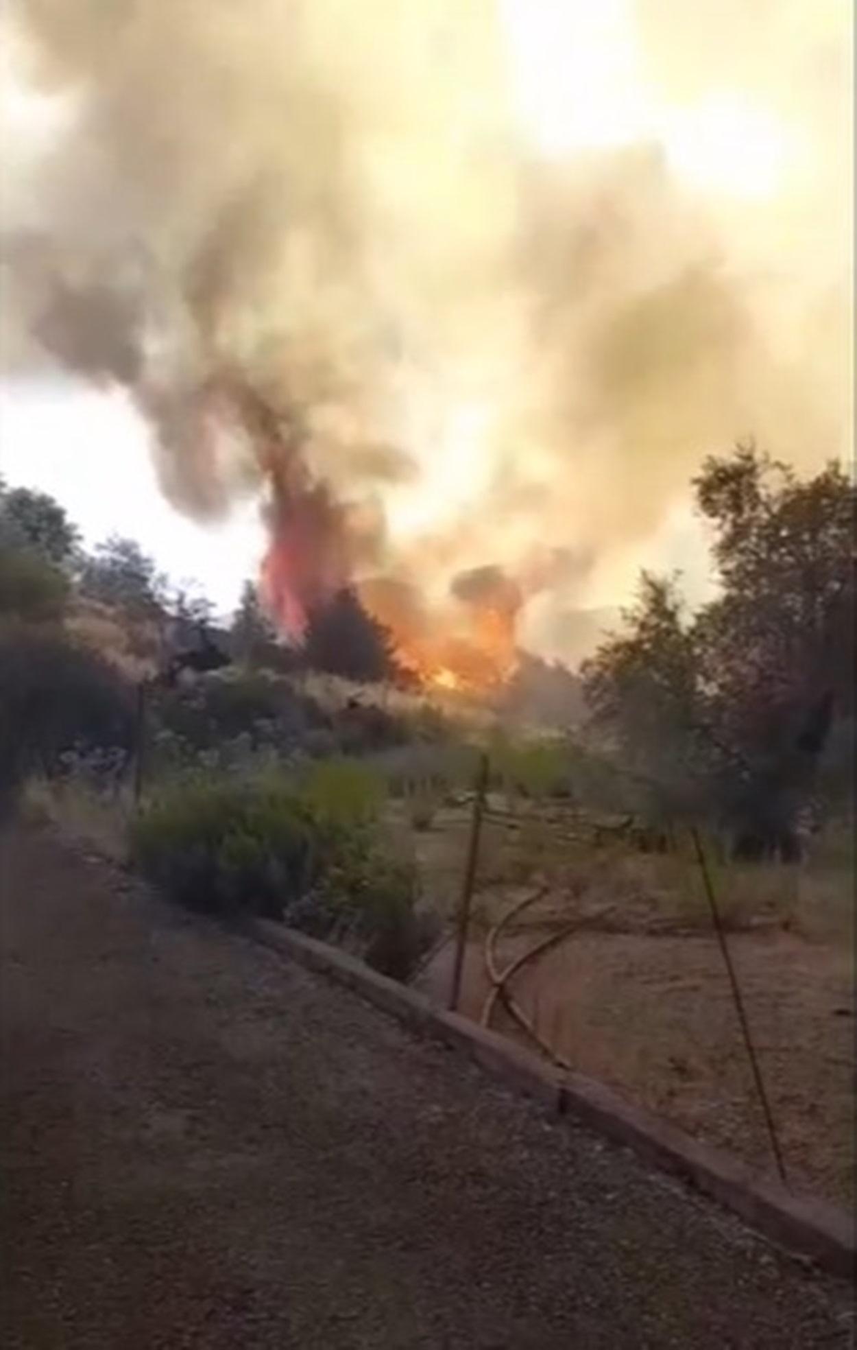 incendio savona famiglie evacuate